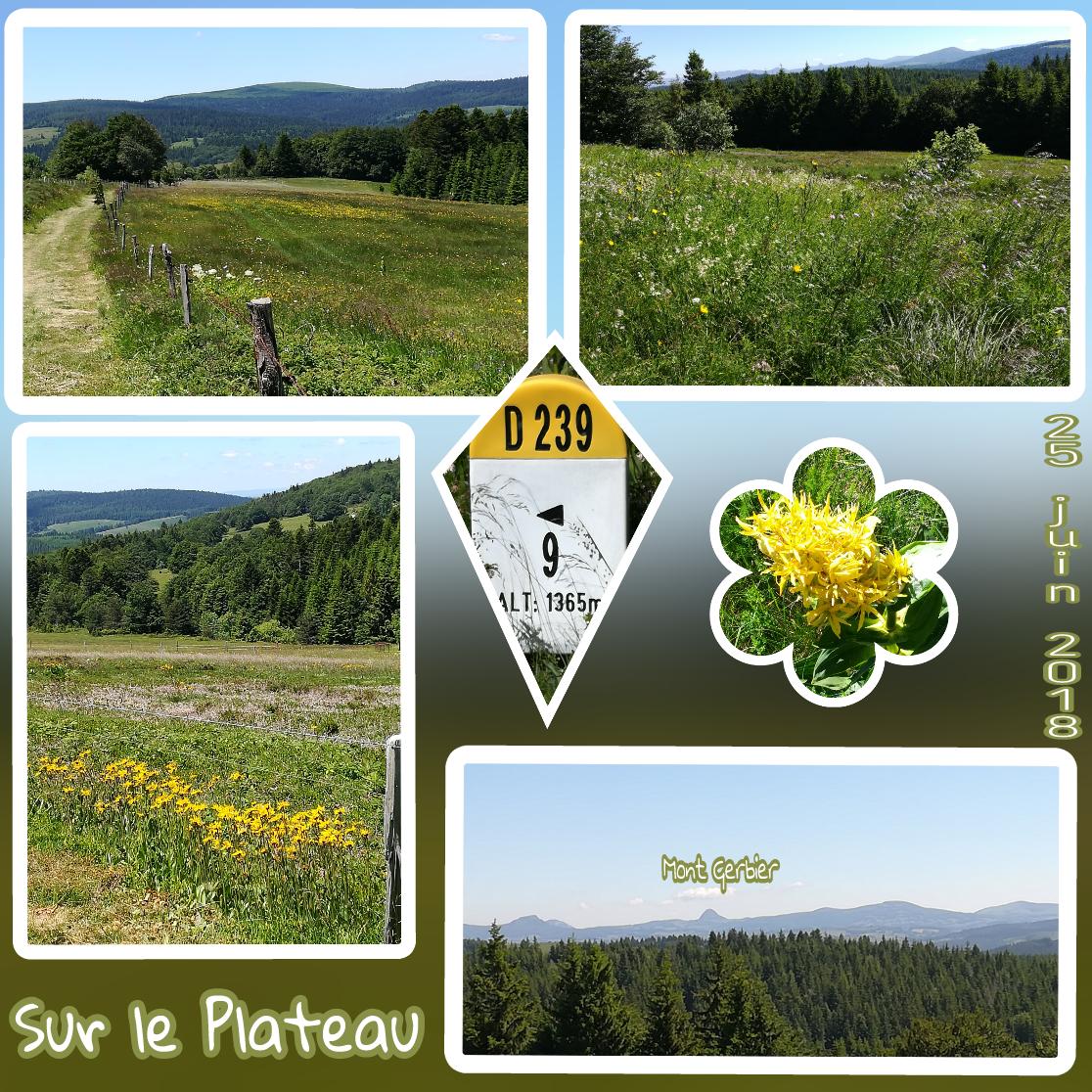 PicsArt_06-30-04.33.19