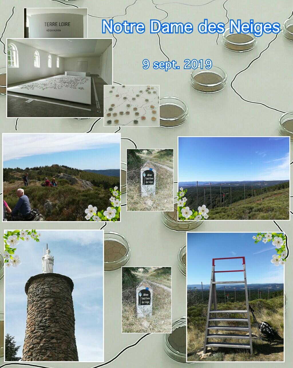 PicsArt_09-10-05.42.11